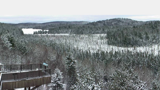March Break Conditions in Algonquin Park