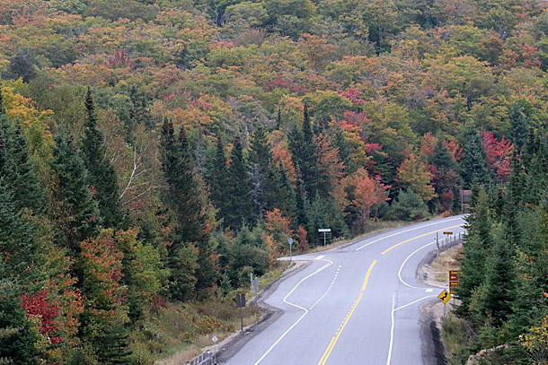 Algonquin Park Fall Colour at the Source Lake Road on September 28, 2015