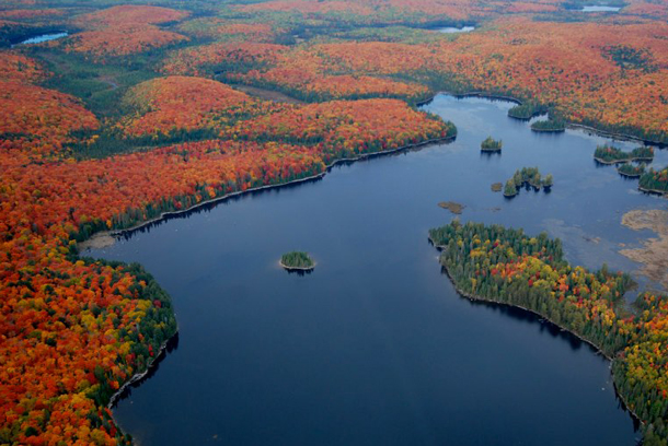 Fall Colour in Algonquin Park