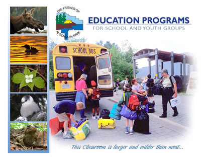 Group Education School Youth Group Brochure