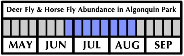 Deer Fly and Horse Fly Flight Period and Abundance in Algonquin Park