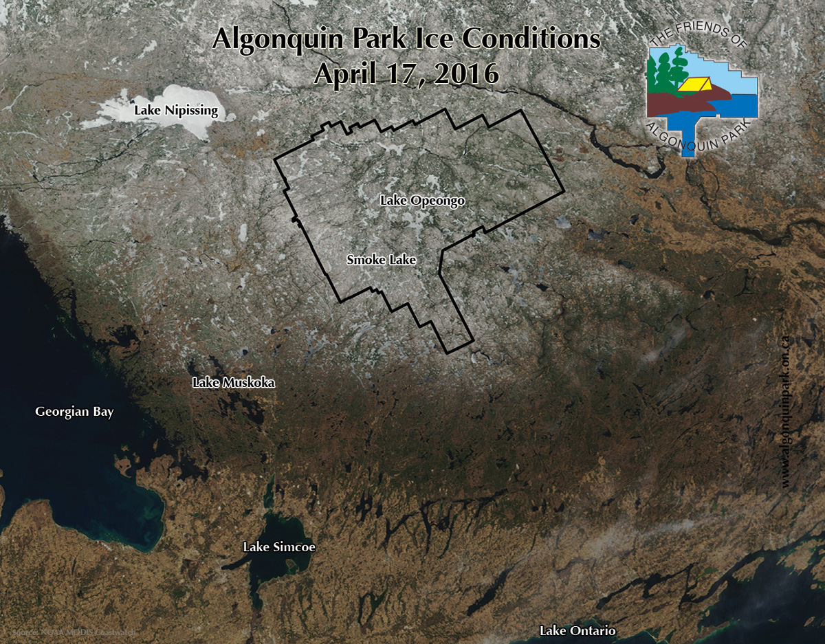 Algonquin Park Ice Cover April 17, 2016