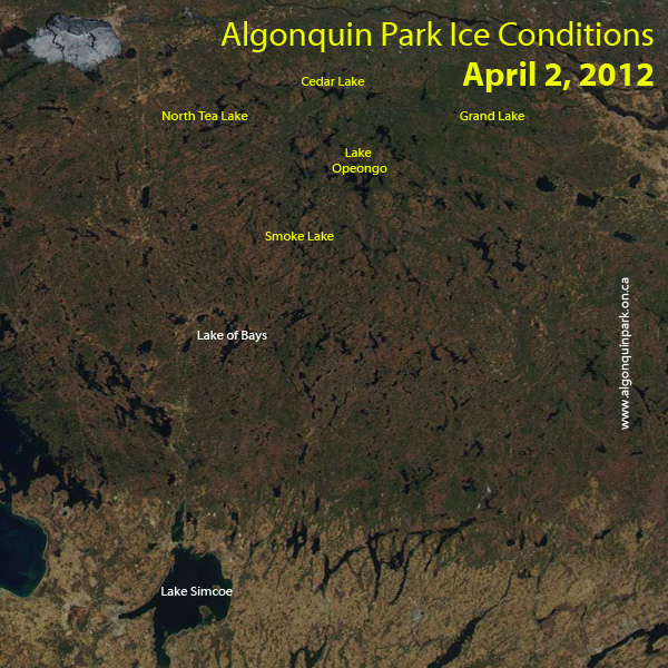 Algonquin Park Ice Conditions April 2, 2012