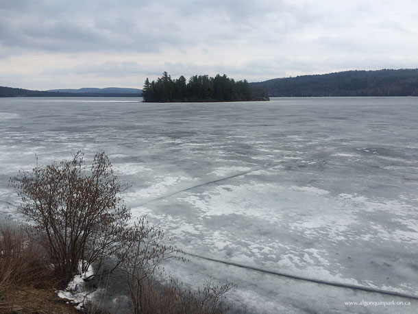 Lake of Two Rivers in Algonquin Park on April 20, 2017