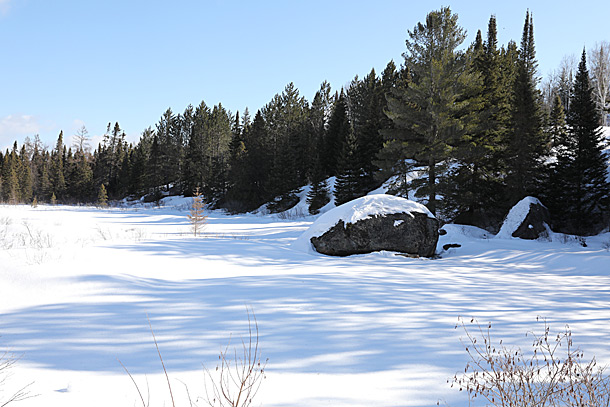 Costello Creek in Algonquin Park on April 4, 2019