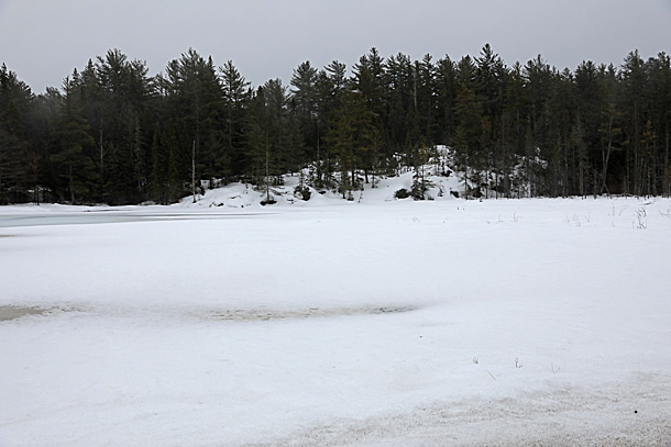 Mew Lake in Algonquin Park