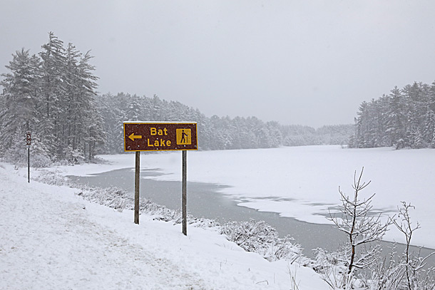 Mew Lake in Algonquin Park on April 15, 2019.