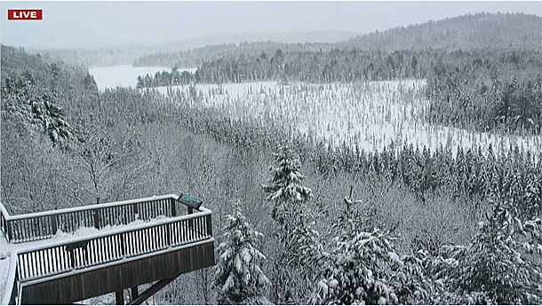 Algonquin Park Viewing Deck via the Algonquin Park Webcam on April 15, 2019.