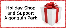 Holiday Shop and Support Algonquin Park
