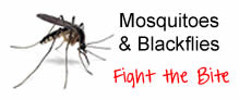 Blackflies and Mosquitoes - Fight the Bite