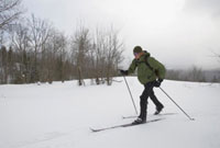 Skiing in Algonquin Park During Winter