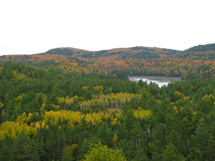 Bat Lake Trail Algonquin Park
