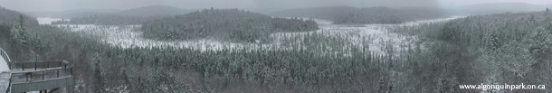 Algonquin Park Webcam Panorama Image in Winter